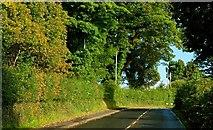 J2866 : The Lambeg Road, Lambeg (1) by Albert Bridge