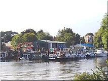 TQ1672 : Swan Island, Twickenham by David Kemp