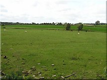 H2799 : Sandymills Townland by Kenneth  Allen
