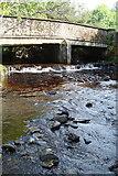 G9876 : Bridge at Ballykillowen by louise price