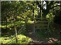 SX8573 : Some of a kissing gate, Templer Way by Derek Harper