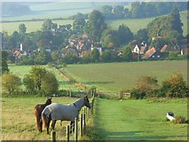 SU7691 : Horses on Turville Hill by Andrew Smith