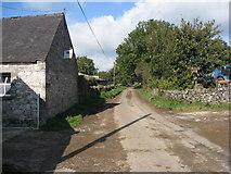 SK1855 : Lane - Passing Foufinside Farm by Alan Heardman