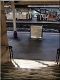 SX9193 : Steps down to platform 2, Exeter St. Davids by Derek Harper