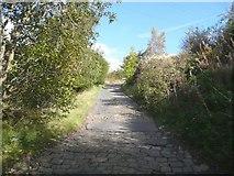 SE1025 : Lane off Godley Branch Road, Halifax by Humphrey Bolton