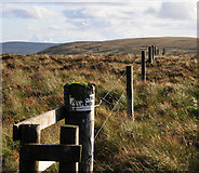NS7604 : Electric fence surrounds Shiel Hill by Greg Morss