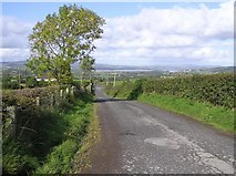 C2407 : Road at Red Brae by Kenneth  Allen